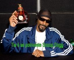 Snoop Dog, idolul lui Boka