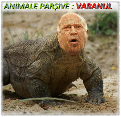Dan Voiculescu - Varanul