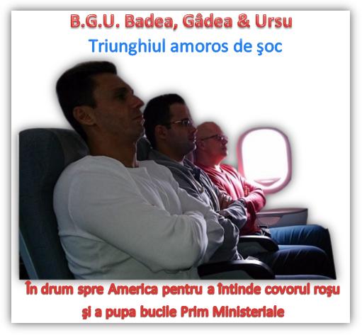 Badea, Gâdea, Ursu