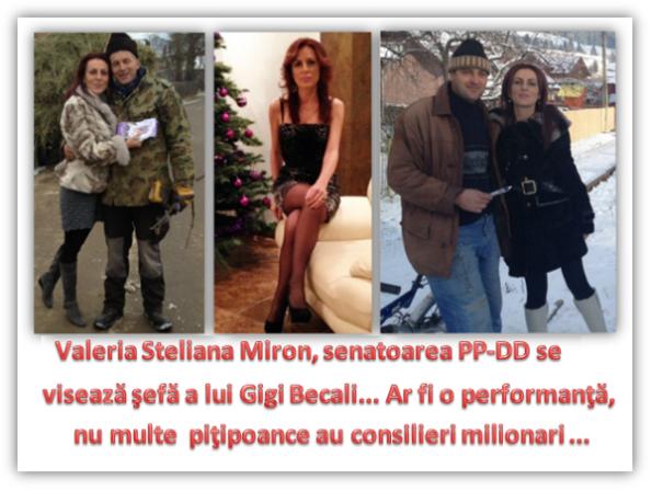 VALERIA STELIANA MIRON  - pițipoanca