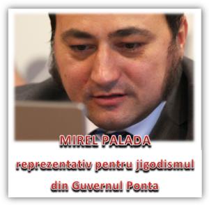 Mirel Palada