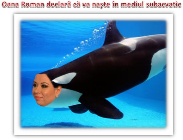 Oana Roman (2)