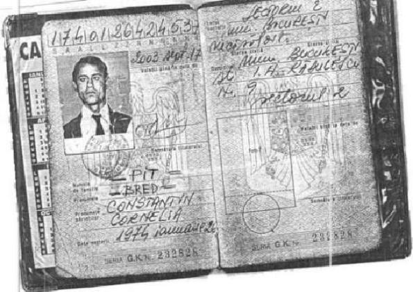 Buletin de identitate - PIT Bred