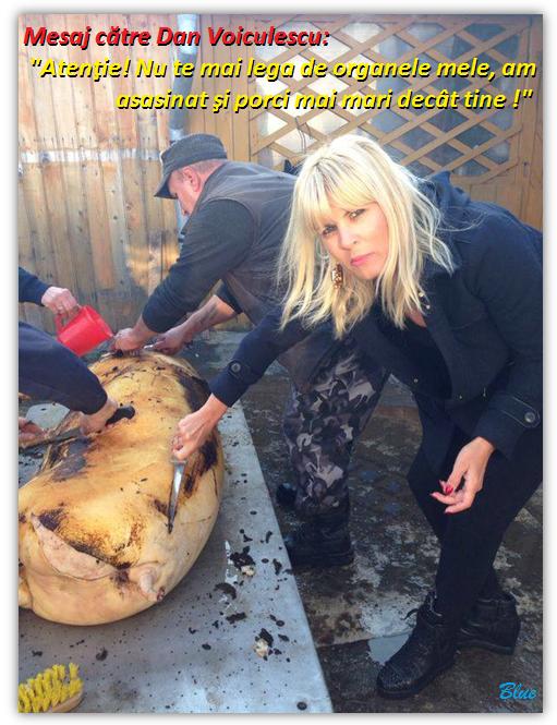 Doamna Elena Udrea a fost asasinul moral al unui porc mai mare decât Varanul Felix