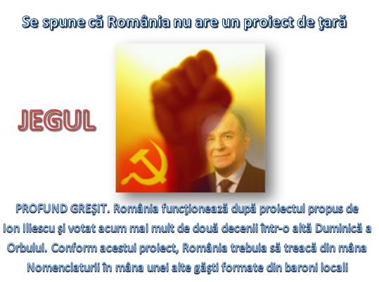 Ion Iliescu. Proiect de țară