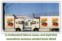 Camioane cu fasolebătută