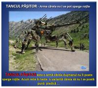 ARMATA ROMÂNĂ, dotări5