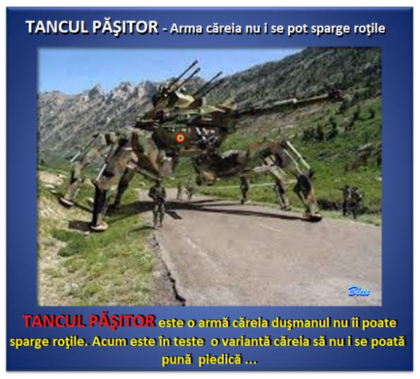ARMATA ROMÂNĂ, dotări 5