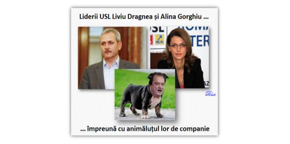 Liviu Dragnea, Alina Gorghiu, Vasile Blaga