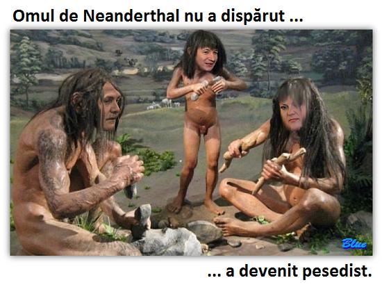 psd-neanderthall