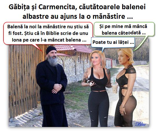1. Gabriela Firea, Carmen Dan, balena albastră