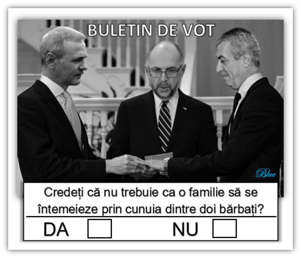 Buletinele De Vot Care Vor Fi Folosite La Referendumul